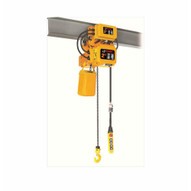 Bison Lifting 2 Ton 3 Phase 20' Single Speed Electric Chain Hoist With Trolley HHBD02SK-01+WPC02-1