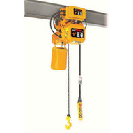 Bison Lifting HHBDSK01-01D+WPC01D 1 Ton 3 Phase Dual Speed 20' Electric Chain Hoist With Trolley-1