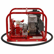 Rice Hydro RP-2C Roller Pump 5 GPM up to 300 PSI w 5.5HP Briggs and Stratton Motor-1