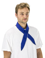 Sas Safety Corp 7304-01 Thermasure Cooling Neck Band(blue)-1
