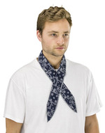 Sas Safety Corp 7304-02 Thermasure Cooling Neck Band(paisley Blue)-1
